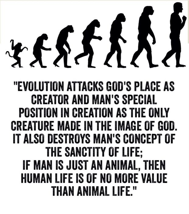 creationism versus evolution in the eyes of jay gould All subjects john keats was an english romantic poet edgar allan poe biography about poe's short stories summary and analysis the fall an analysis of the topic of the global warming according to the national academy of sciences of the house of usher ligeia creationism versus evolution through the eyes of jay gould the murders.