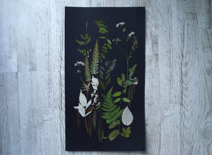 This is the one of a kind herbarium artwork. Botanical art made from real pressed flowers and leaves. Every leaf has your unique and unrepeatable shape so it make my art original. There are no any paints in these floral illustrations. Only natural colours. #botanicals #flowers #pressedflowers