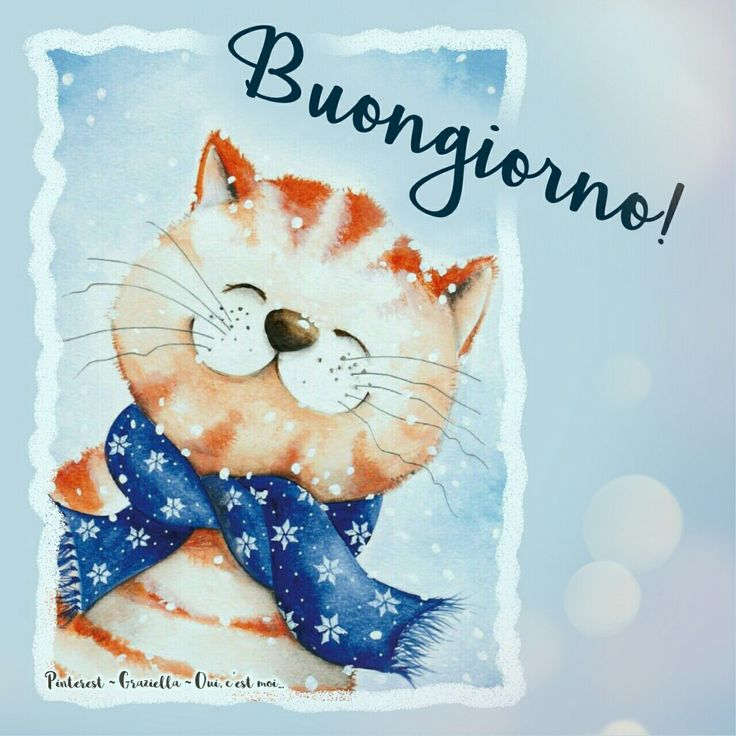 5890 best social buon di 39 images on pinterest for Top immagini buongiorno