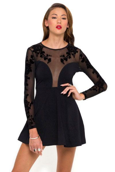 Black Embroidered Mesh Plunge Skater Dress