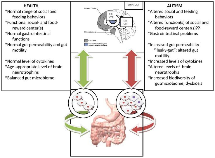 Altered gut microbiome and the brain gut axis in autism S-R-CTR - sample masshealth fax cover sheet
