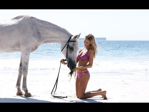 ▶ Funny Horse Videos March 2014 - YouTube