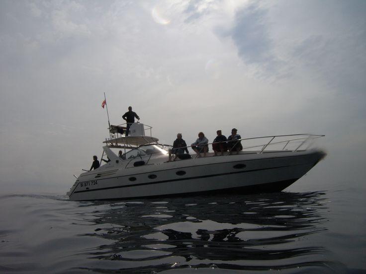 """Le bateau """"Cala Rossa"""" vu lors d'une mise à l'eau pour nager avec les dauphins"""