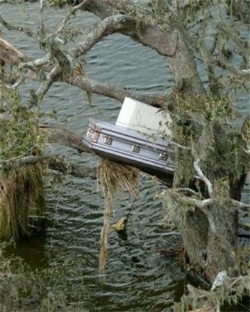 A casket is stuck in a tree  surrounded by floodwaters in the aftermath of Hurricane Rita Monday, Sept. 26, 2005 in Grand Chenier, La.  Photo credit:David J. Phillip/AP Photo