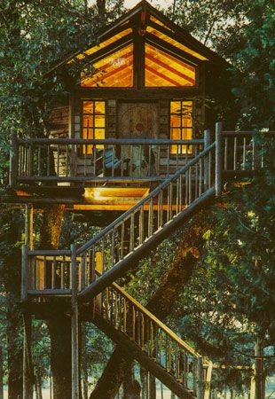 stay in a tree house in Cave Juction Oregon