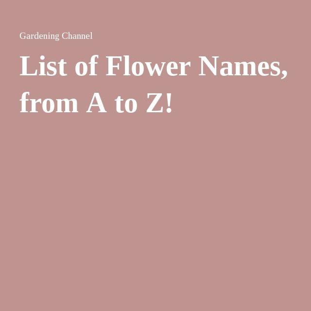 Die besten 25 Ideen zu List Of Flower Names auf Pinterest ...