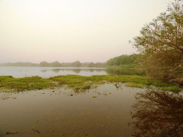 Le lac Tchad en Afrique centrale : 20 lieux sur Terre où l'eau a disparu - Linternaute