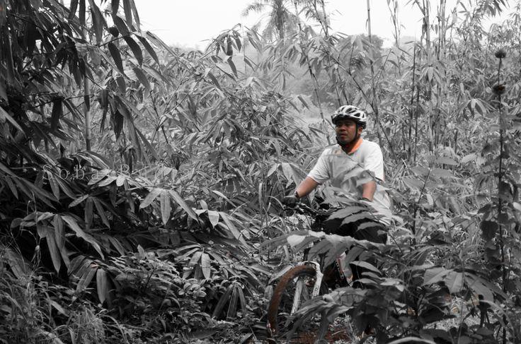 rimbunnya jalur bersepeda di JPG Mtb Park membuat sehat dan menyegarkan  post by http://eben3d.blogspot.com