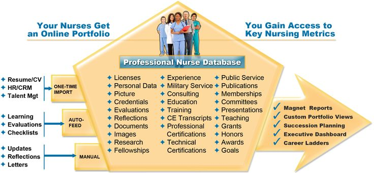 best 25  nursing portfolio ideas on pinterest