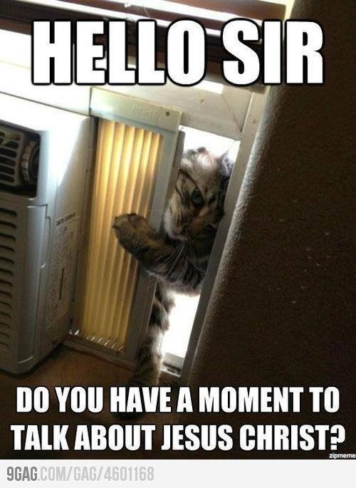 This is great!: The Doors, Laughing So Hard, Funny Cat, Jesus Christ, Funny Quotes, Jehovah Witness, Books Of Mormons, So Funny, Kitty