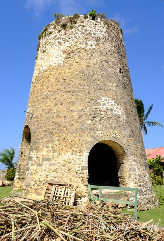 Allison's outstanding photos immerse you into the historic Jacobean mansion, magnificent gardens, and working sugar and rum plantation at St. Nicholas Abbey, Barbados.