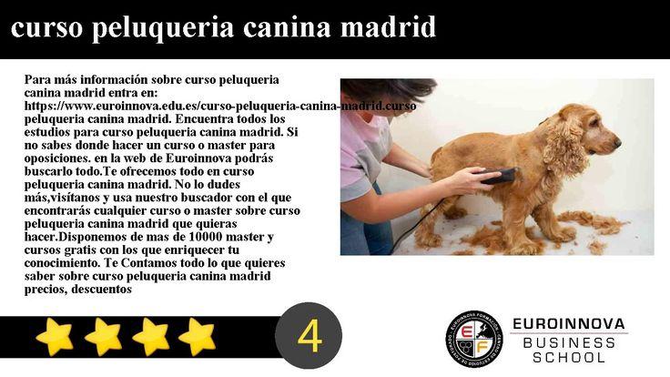 curso peluqueria canina madrid - Para más información sobre curso peluqueria canina madrid entra en: https://www.euroinnova.edu.es/curso-peluqueria-canina-madrid.    curso peluqueria canina madrid. Encuentra todos los estudios para curso peluqueria canina madrid. Si no sabes donde hacer un curso o master para oposiciones. en la web de Euroinnova podrás buscarlo todo.    Te ofrecemos todo en curso peluqueria canina madrid. No lo dudes másvisítanos y usa nuestro buscador con el que encontrarás…