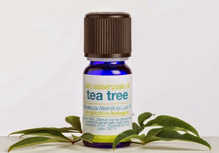 Pompea la Venere Kitchen & Beauty: Review: Tea tree oil, una manna dal cielo