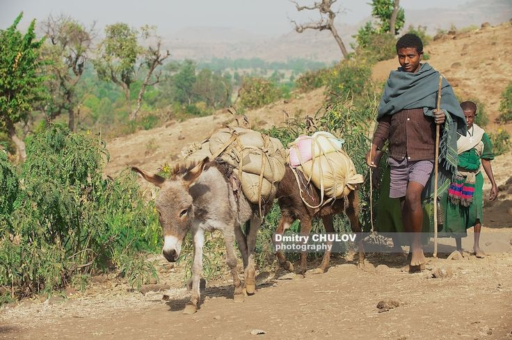 Найти таинственный Голубой Нил, Эфиопия. - http://www.dchulov.com/ethiopia-blue-nile/