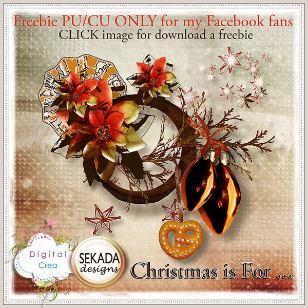 https://www.facebook.com/pages/Sekada-Designs/130461753634729?id=130461753634729&sk=app_161128210587174