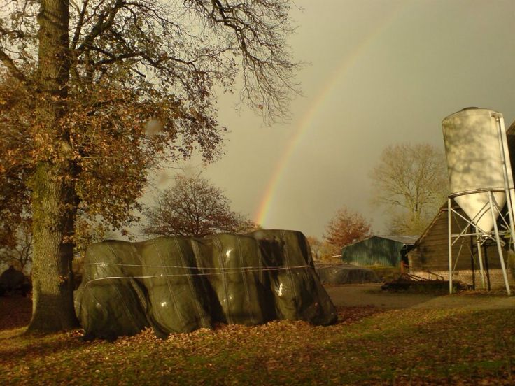 The rainbows again, yes I love these kind of photo's :-)