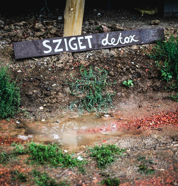 Bedepuszta Retreat - Your detox holiday after Sziget Festival