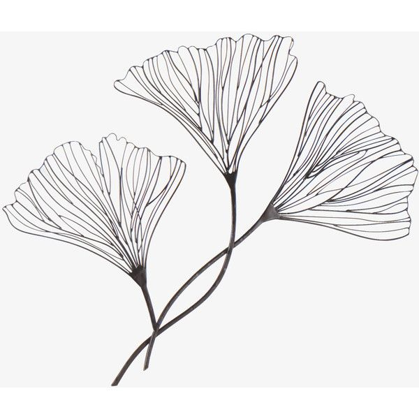 Fielding Grey Metal Floral Wire Wall Decoration ❤ liked on Polyvore
