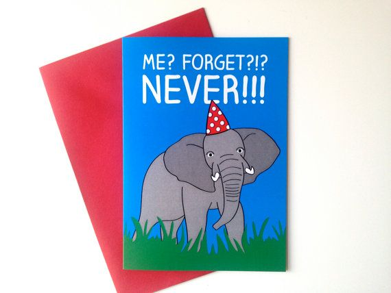 Elephant Birthday Card belated birthday card by helloDODOshop via Etsy