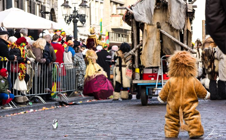 Lonely lion, at Maastricht carnaval (2014).