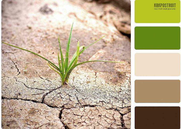 Классическое сочетание цветов в интерьере: коричневый в качестве нейтрального | KAKPOSTROIT.SU