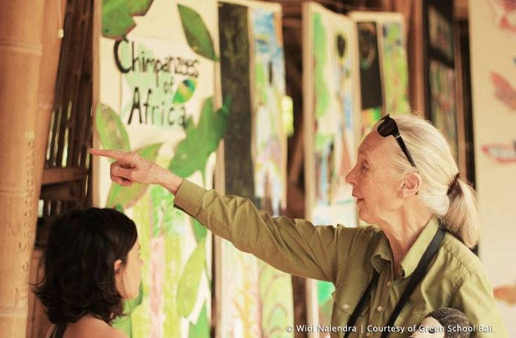 In June 2014, Green School was honored to have Dr. Jane Goodall visit the school and spent 4 remarkable days with the children and community!