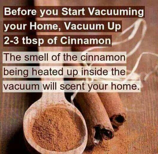 I already do this. Plus, I think cinnamon kills the spiders I vacuum up :).