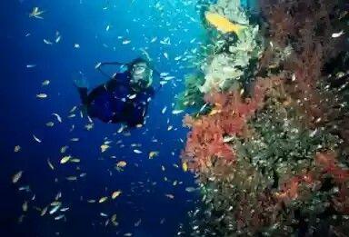 Bunaken_Sulawesi Utara(Indonesia)