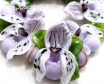 Orchidee Frauenschuh Lavender gold