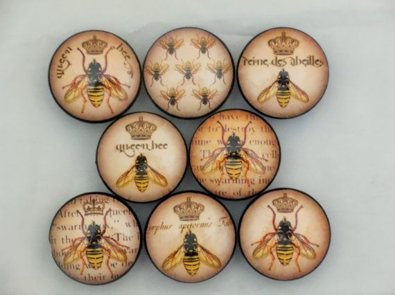 Set Of 8 Queen Bee Cabinet Knobs By TwistedRDesign On Etsy