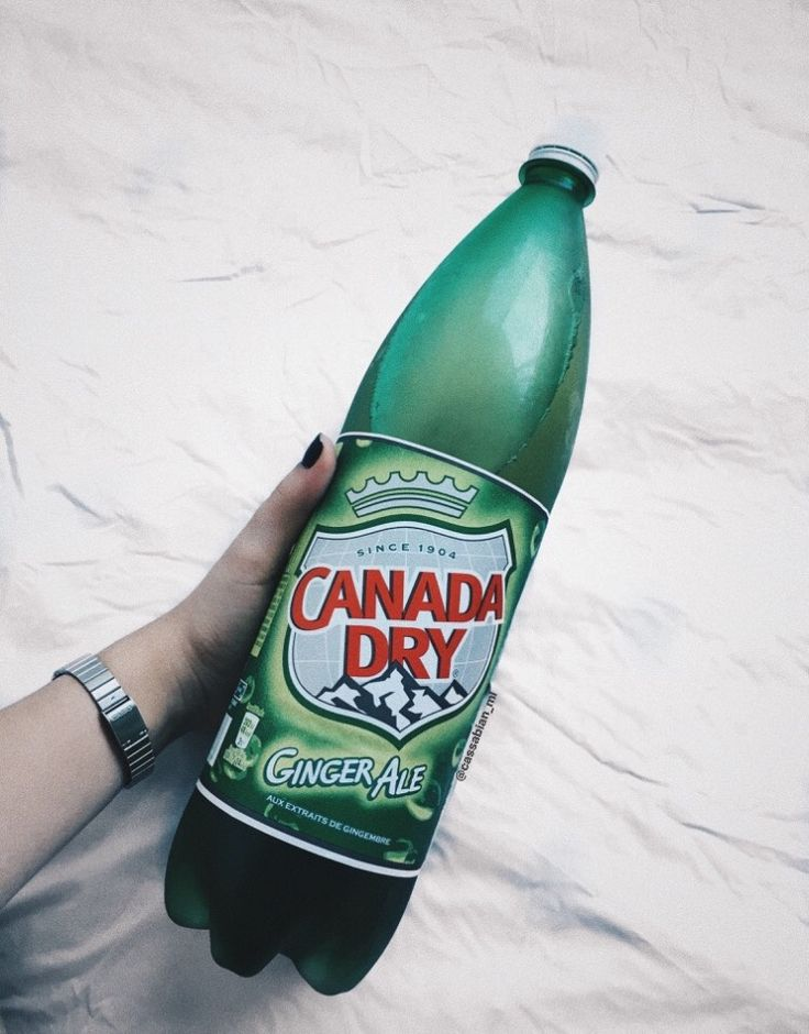 canada dry ; ginger ale ; tumblr ; retro ; soda ; refrigerante ; bebida ; verde ; vintage ; pin it