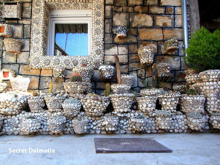 Seashells all over!