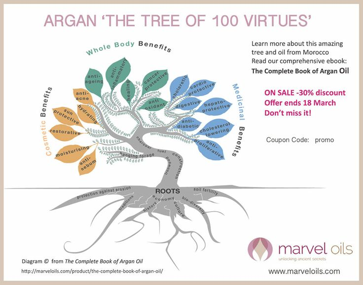 8 best the culinary argan oil images on pinterest argan oil 100 the complete book of argan oil httpmarveloilsproduct fandeluxe Image collections