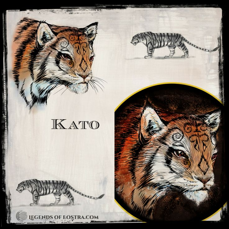 Kato, the last of the Fire Tigress on Annwyn- how her character drawing developed.  #motherearth #fantasy #auslit #easter #vernalequinox #YABook