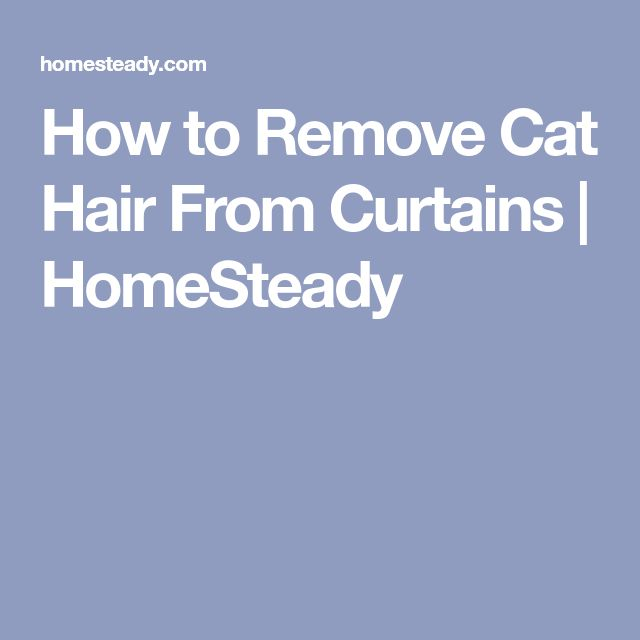 How to Remove Cat Hair From Curtains | HomeSteady