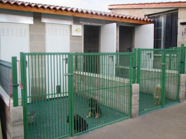residencia canina hospital veterinario ferral clnica veterinaria veterinario clnica mvil veterinaria