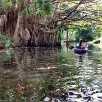 123 Free and Cheap Things to Do in Fort Myers,FL (Page 10) | TripBuzz