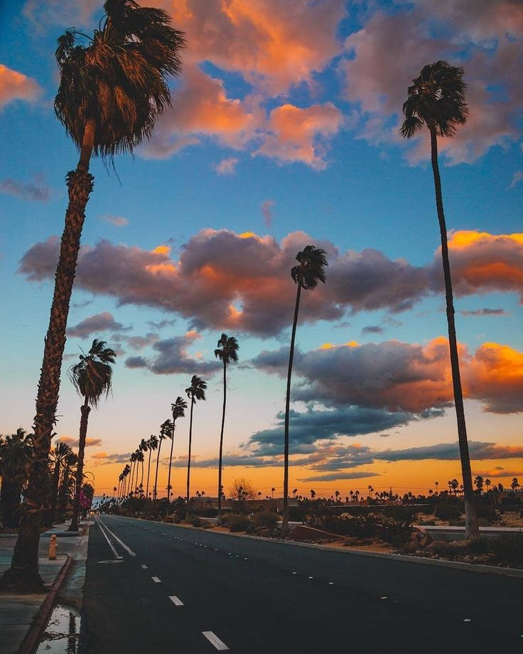 Palm Springs California by @mcgeephotografy by CaliforniaFeelings.com california cali LA CA SF SanDiego