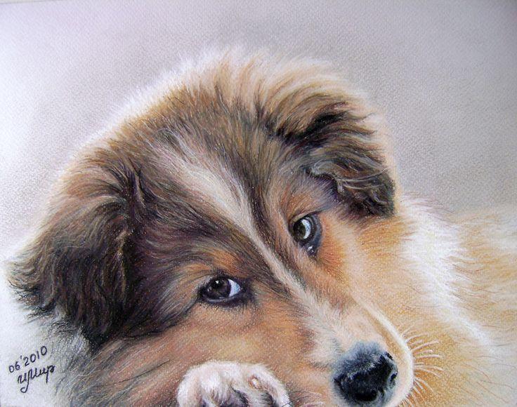 И. Мир, 2010, Pastel painting
