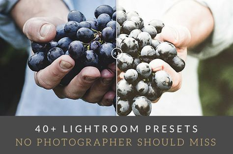 40+ Lightroom Presets No Photographer Should Miss