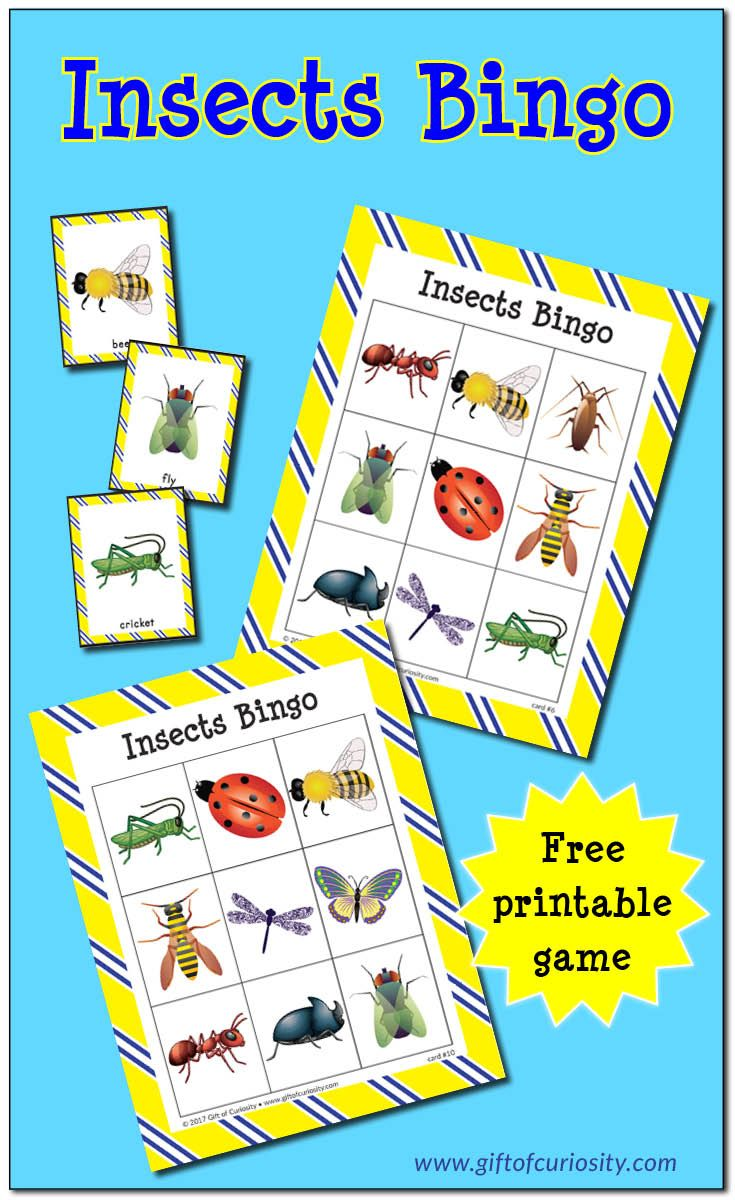 Ötökkä hyönteinen bongaus  Free printable Insects Bingo game | Learn to identify 10 different insects | free insect printables || Gift of Curiosity