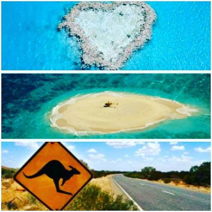 ESTUDE e TRABALHE na AUSTRÁLIA!!! AGORA é a HORA!  http://ift.tt/1lxbMPQ ( 31 ) 3344 7696  #continentesviagens #intercambio #estudeetrabalhenoexterior #estudaridiomas #ingles #australia #sydney #brisbane #noosa #sufersparadise #goldcoast #melbourne #cairns #adelaide #perth #newsouthwales #queensland #victoria #westernterritory #tasmania #greatbarrierreef #grandebarreiradecorais by continentesviagens http://ift.tt/1UokkV2