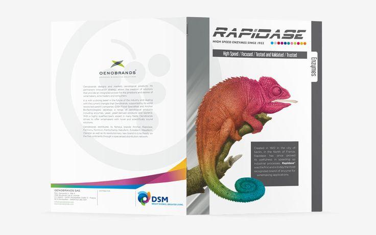 #agencerebelle - brochure #Rapidase #PrintPlaquette