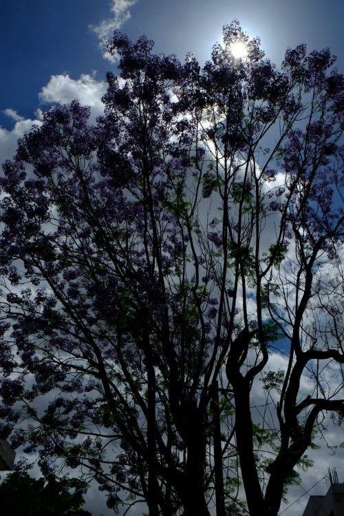 http://365photos.pl #taniewakacjenacyprze #photooftheday #magiccyprus #beautiful