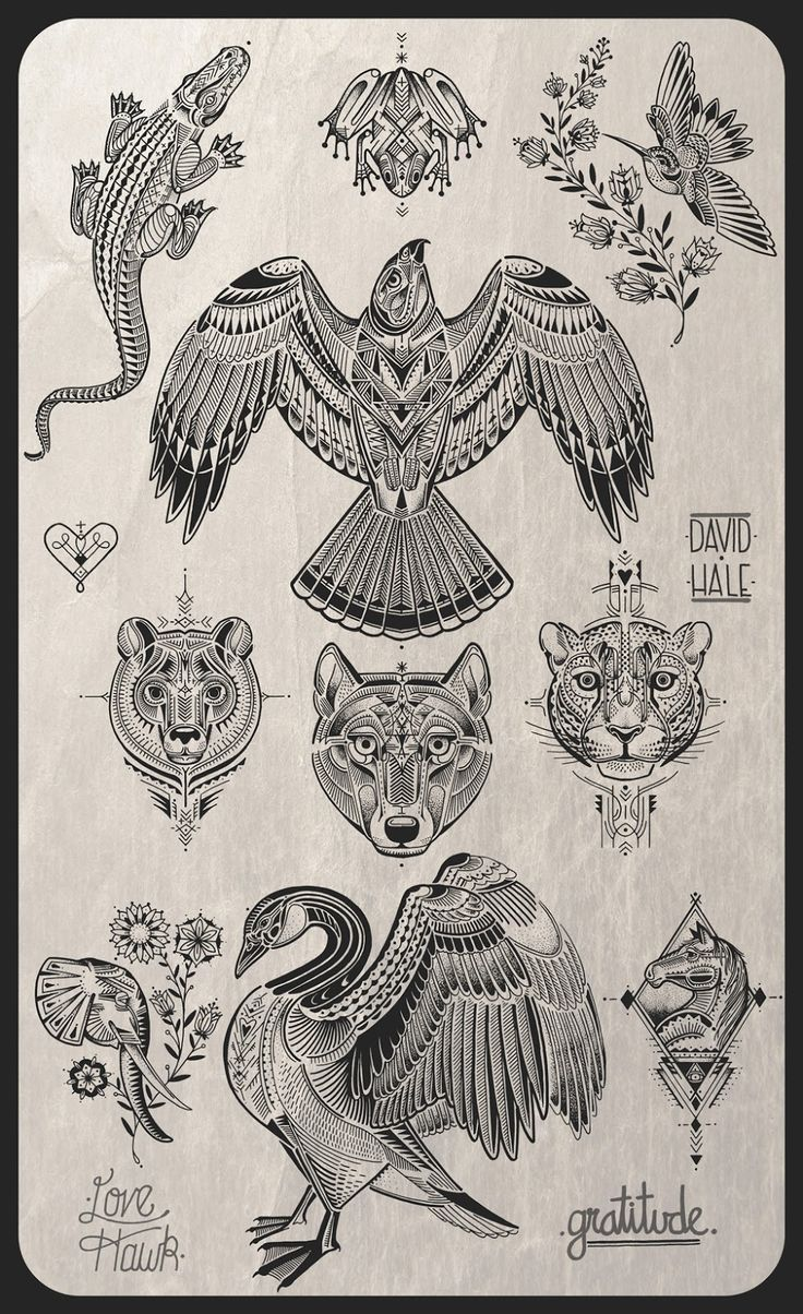 David hale tattoo flash
