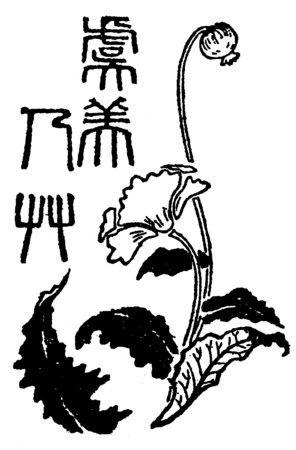 東京朝日新聞に掲載された夏目漱石「虞美人草」題字飾りカット(東京・大阪朝日新聞、明治40年6月~10月)