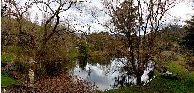 Lily M home town Yarra Ranges Victoria Australia