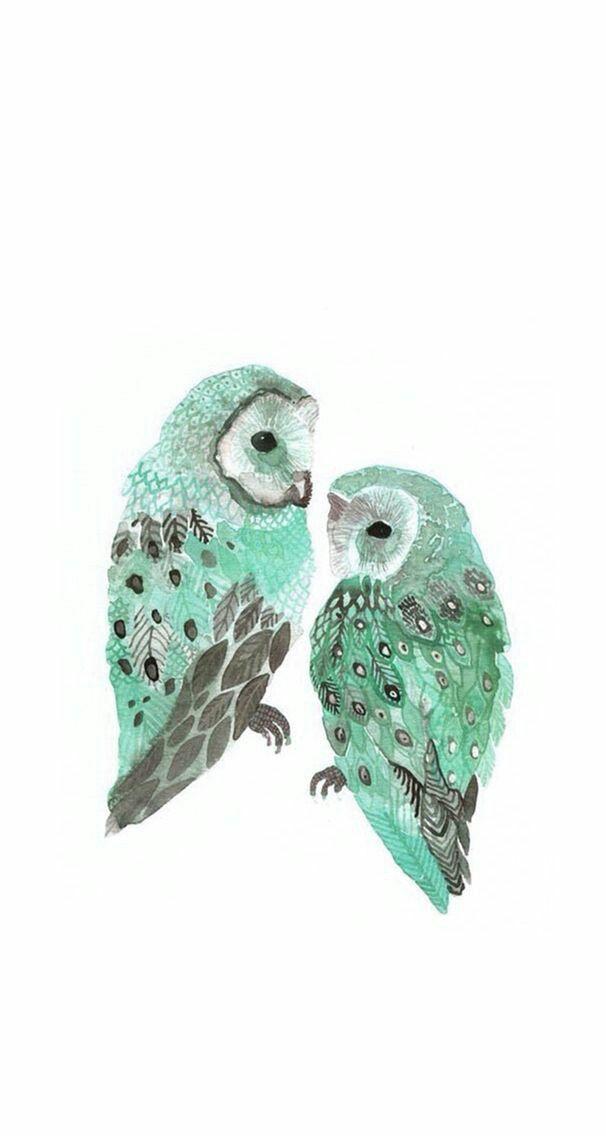 Two Barn Owls Archival Print от unitedthread