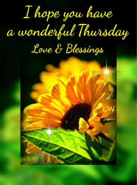I Hope You Have A Wonderful Thursday And The Blessings That The