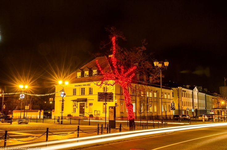#Bialystok #glowingtree #night